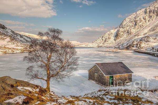 Frozen Lake Ogwen Print by Adrian Evans