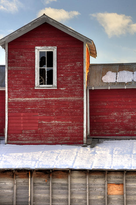 Ft Collins Barn 13496 Print by Jerry Sodorff