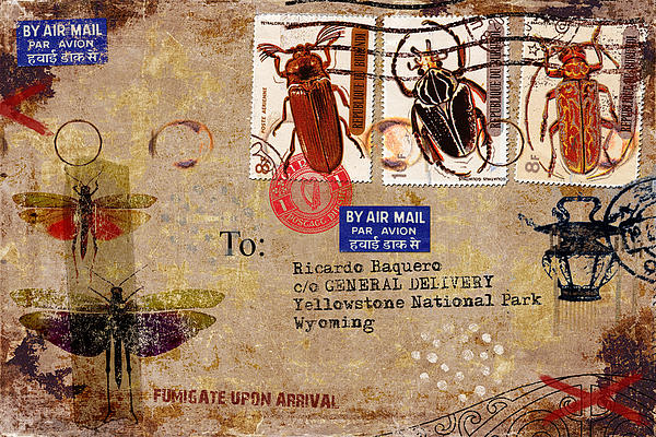 Fumigate Upon Arrival Print by Carol Leigh