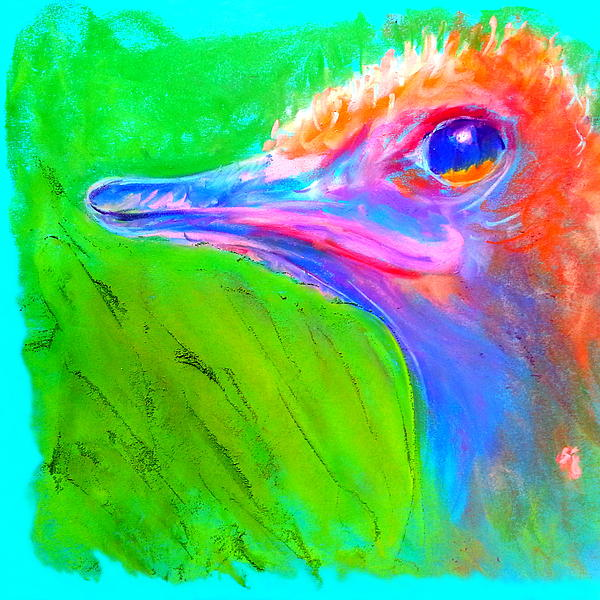 Sue Jacobi - Funky Ostrich Profile