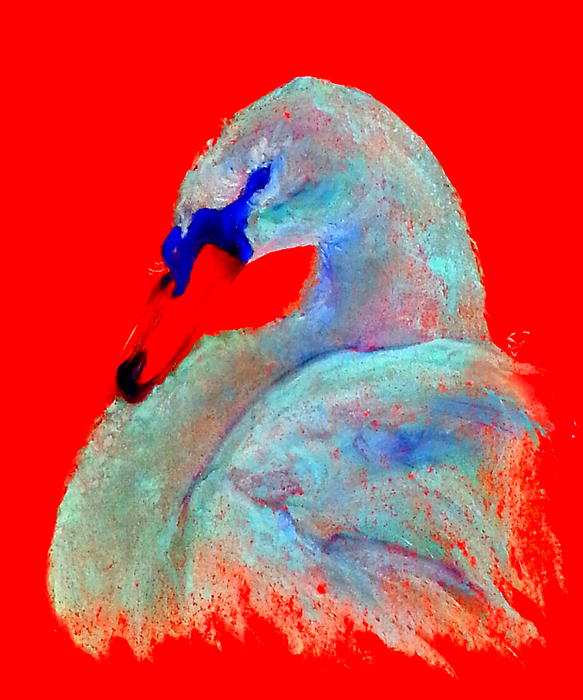 Sue Jacobi - Funky Swan Blue on Red