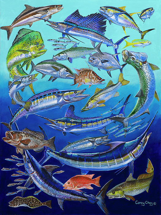 Gamefish Collage In0031 Print by Carey Chen