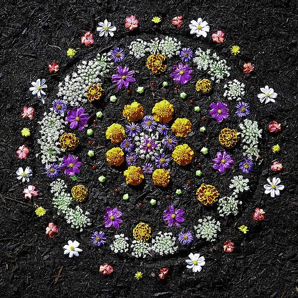 Garden Mandala 2009 V.2 Print by Joseph Duba