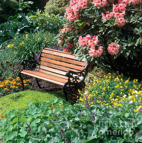 Garden With Bench Print by Hans Reinhard