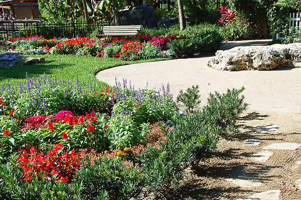 Gardenscape Print by Aimee L Maher Photography and Art