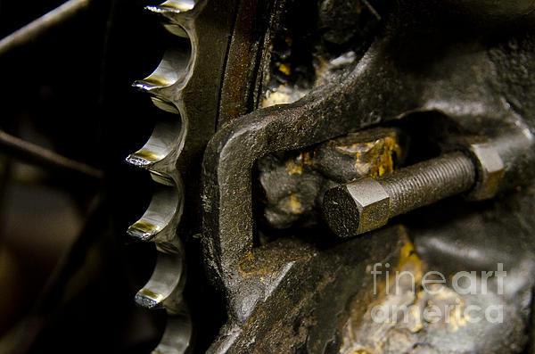 Wilma  Birdwell - Gears Grease Rust Family Harley Davidson