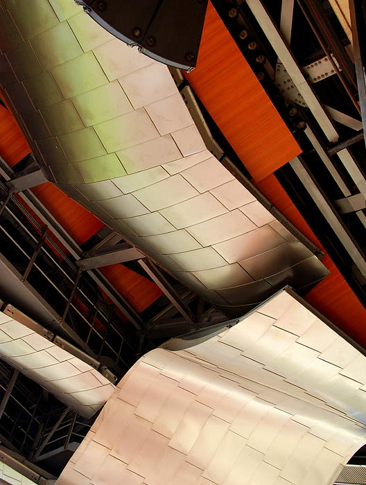 Gehry Up Close Print by Kristin  Hoerter