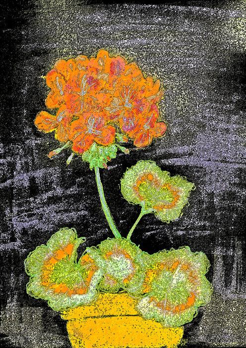 Stephanie Grant - Geraniums and Chalkboard