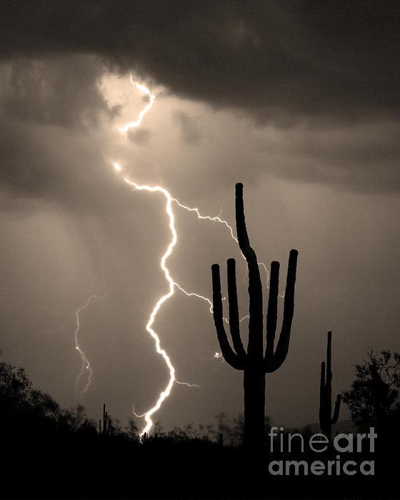 Giant Saguaro Cactus Lightning Strike Sepia  Print by James BO  Insogna