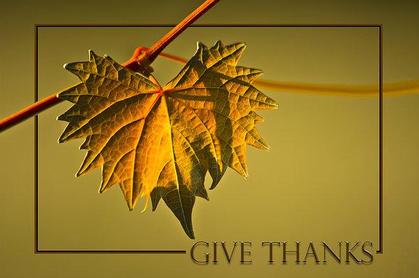 Give Thanks Print by Carolyn Marshall