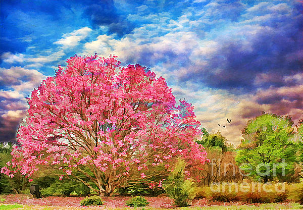 Glorious Spring Print by Darren Fisher