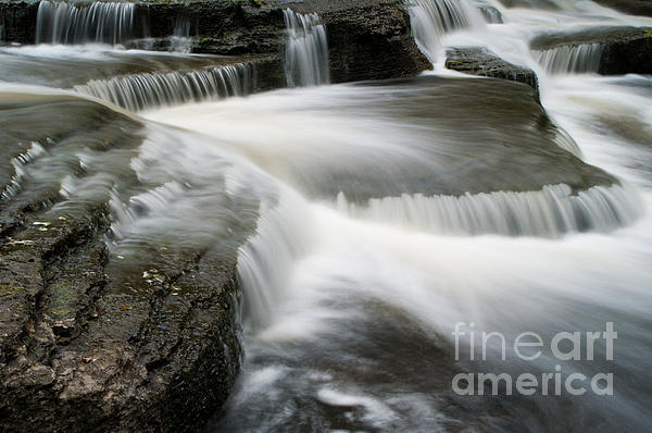 Go With The Flow Print by Ron Pettitt