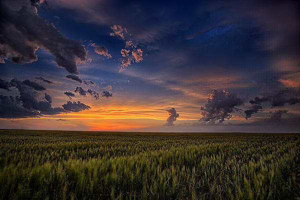 God's Country Print by Thomas Zimmerman