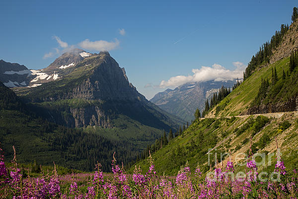 Going To The Sun Road Print by Natural Focal Point Photography
