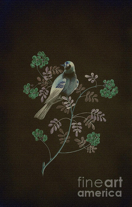 Gold Finch-4 Photoart Print by Becky Hayes