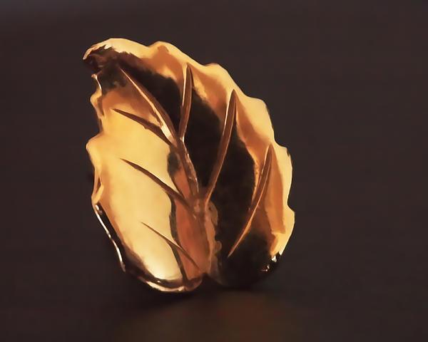Gold Leaf Print by Rona Black