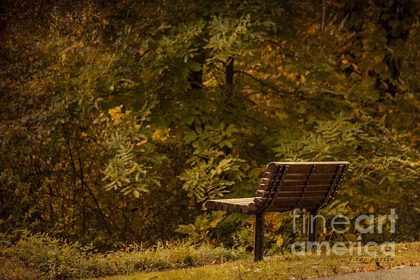 Golden Autumn Solitude Print by Janice Rae Pariza