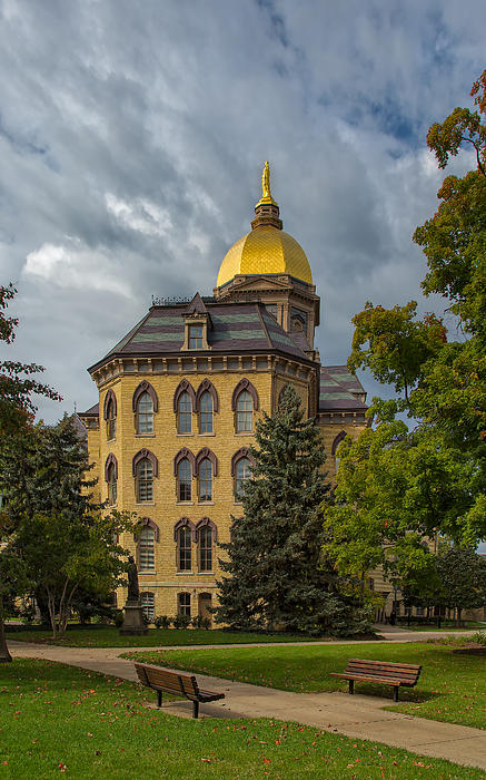 John Bailey - Golden Dome