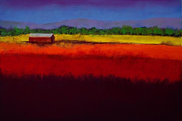 Golden Field Print by David Patterson