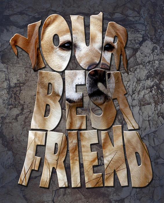 Golden Labrador Retriever Typography Art Print by Georgeta Blanaru