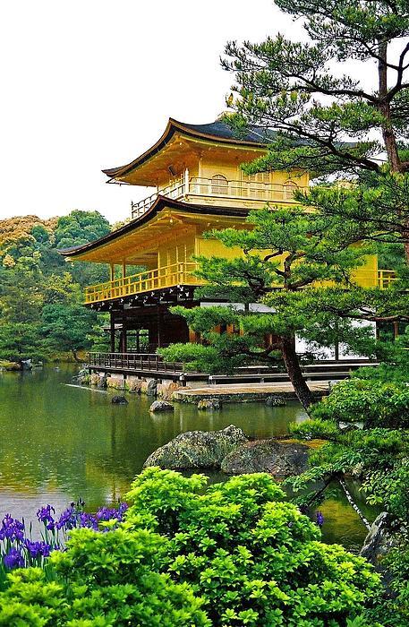 Golden Pavilion - Kyoto Print by Juergen Weiss