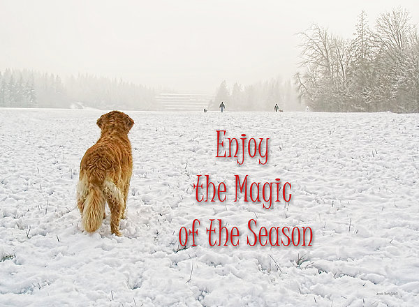 Golden Retriever Dog Magic Of The Season Print by Jennie Marie Schell