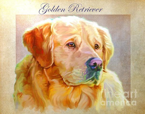 Golden Retriever Painting Print by Iain McDonald