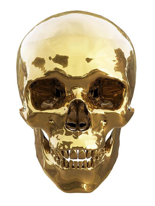 Golden Skull Print by Vitaliy Gladkiy