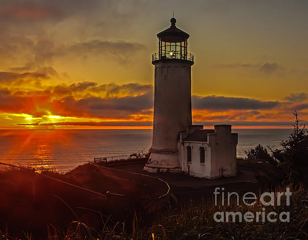 Golden Sunset At North Head Lighthouse Print by Robert Bales