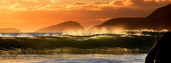Golden Wave Print by Florian Walsh