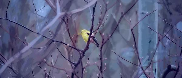 Henry Kowalski - Goldfinch in the Woods 2
