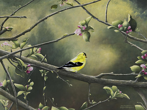 Mary Ann King - Goldfinch