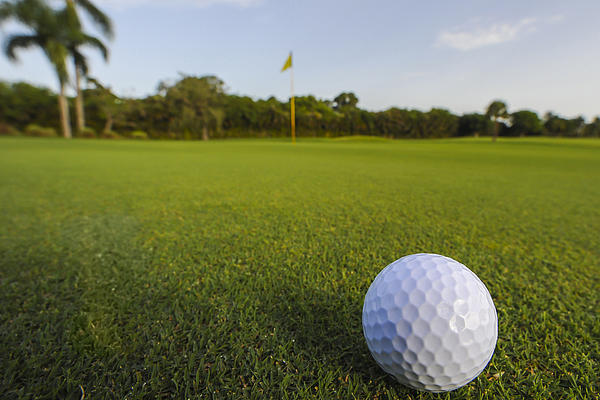 Golf Ball On Golf Course Print by M Cohen