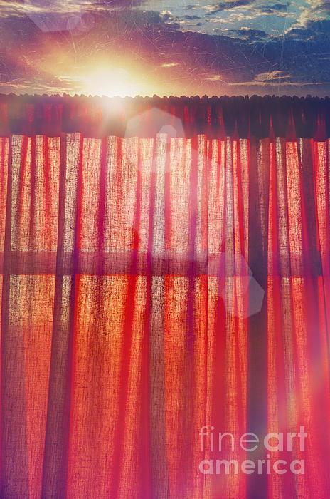 Goodmorning Sunshine Print by Danilo Piccioni