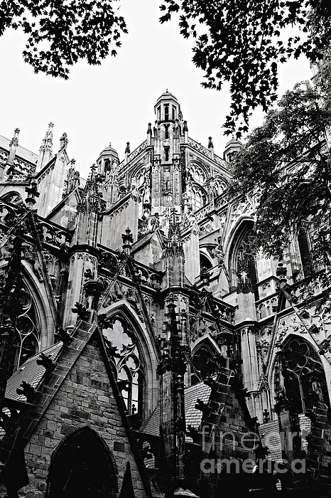 Gothic Cathedral Of Den Bosch Print by Carol Groenen