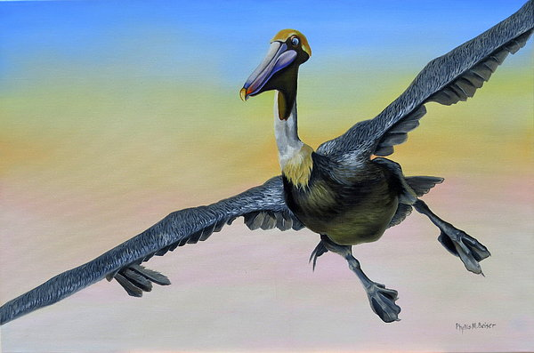 Graceful Landing Print by Phyllis Beiser