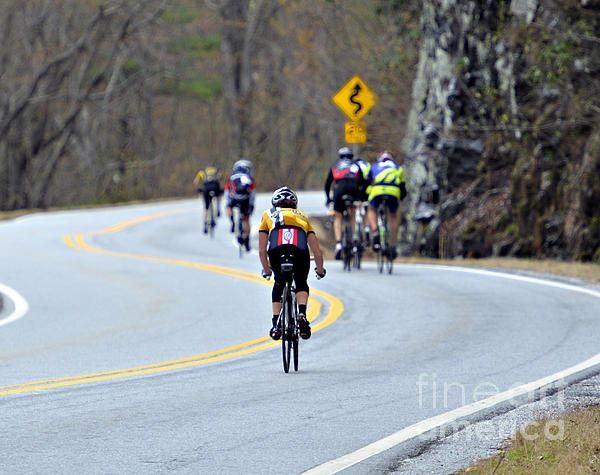 Gran Fondo Bike Ride Print by Susan Leggett