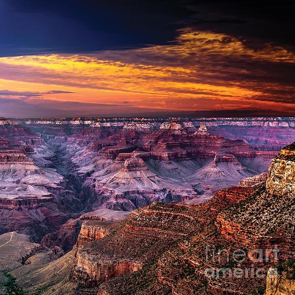 Grand Canyon  Arizona Print by Ludmila Nayvelt