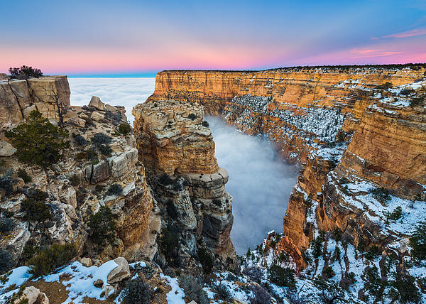 Grand Canyon In The Clouds Print by Adam  Schallau