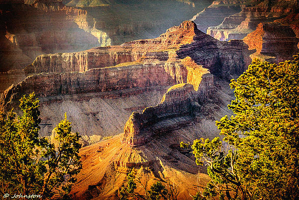 Grand Canyon National Park Print by Bob and Nadine Johnston