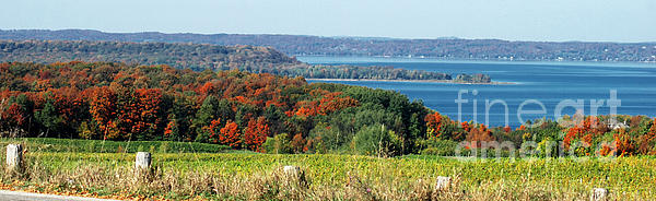 Grand Traverse Winery Lookout Print by Optical Playground By MP Ray