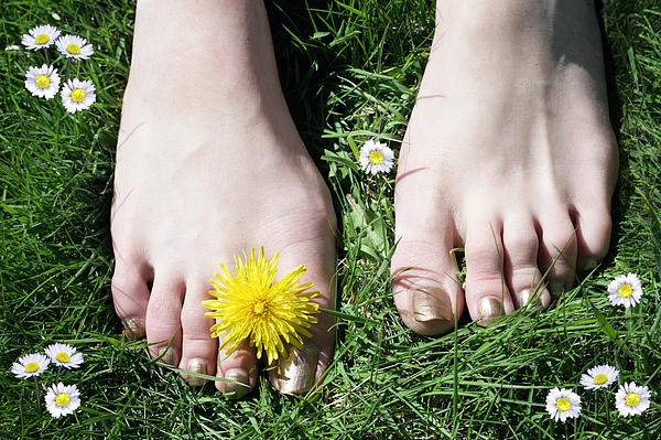 Grass Between My Toes Print by Stephen Norris