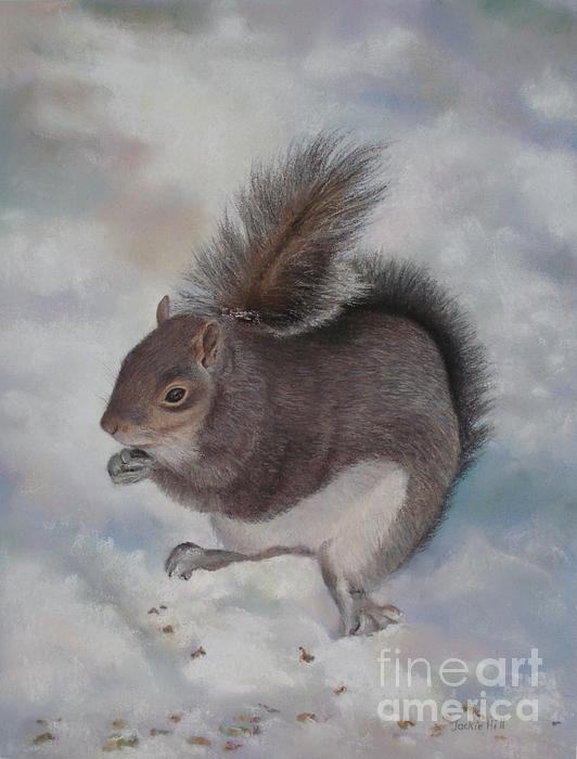 Gray Squirrel Print by Jackie  Hill