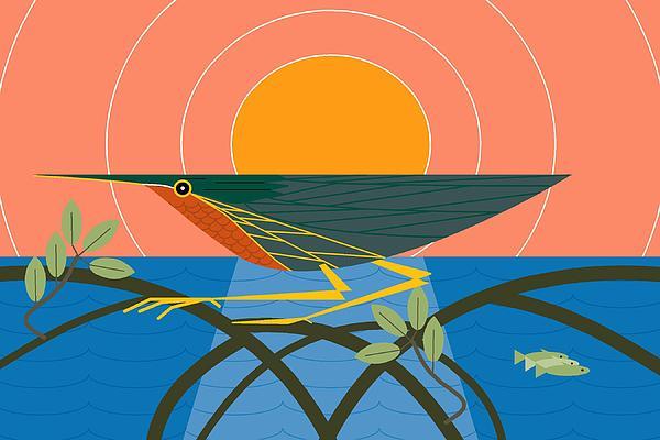 Green Heron Print by Marie Sansone