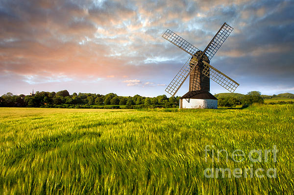 Green Ocean ''pitstone Windmill'' Print by Radoslav Toth