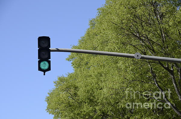 Green Traffic Light By Trees Print by Sami Sarkis