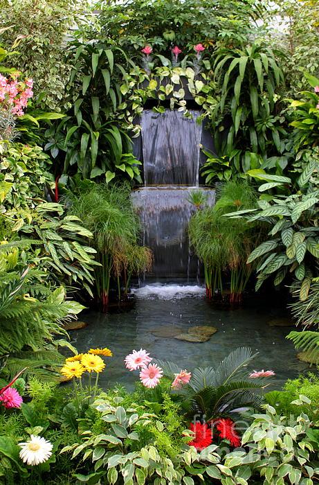 Greenhouse Garden Waterfall Print by Carol Groenen