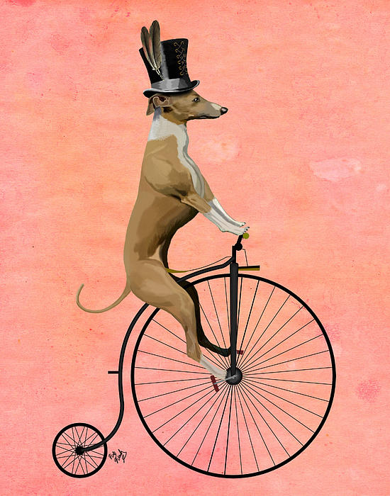 Greyhound Pennyfarthing Black Print by Kelly McLaughlan