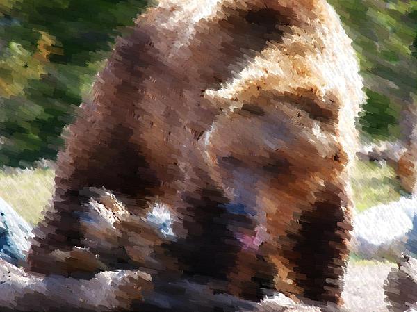 Grizz Print by Kevin Bone