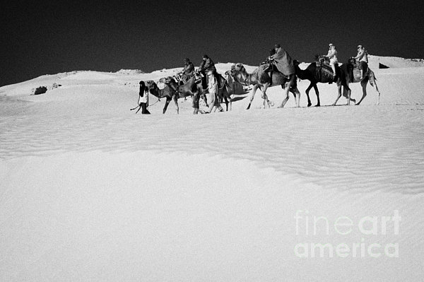 group of tourists in desert dress on camel back being taken through the sand dunes and ruins sahara desert at Douz Tunisia Print by Joe Fox